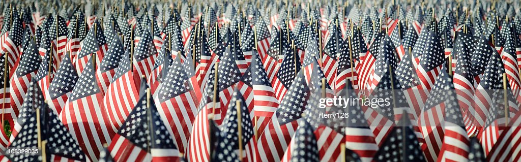 Panoramic image of an array of Memorial Day flags : Stock Photo