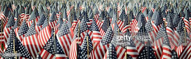 panoramic image of an array of memorial day flags - armistice day stock photos and pictures