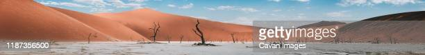 panoramic landscape of deadvlei in namibia - dead vlei namibia stock pictures, royalty-free photos & images