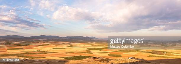 Panoramic landscape of golden fields, Spain