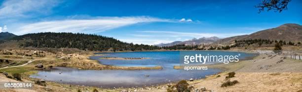 Panorama landschap van Mucubaji lagune met Frailejons, Merida staat, Venezuela