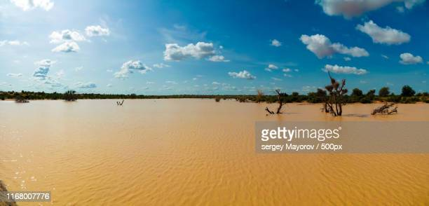 panoramic landscape view to sahel and oasis dogon tabki with flooded river , dogondoutchi, niger - ニジェール ストックフォトと画像