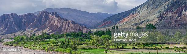 panoramic, lush vegetation at the purmamarca river, behind cerro de los siete colores or hill of seven colors in purmamarca, jujuy province, argentina - cerro de los siete colores foto e immagini stock