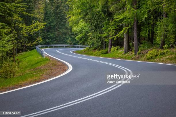 panoramic mountain road (hdri) - pineta foto e immagini stock