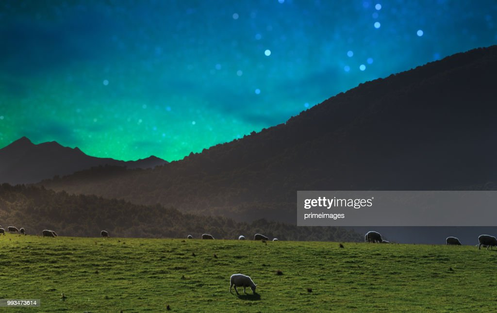 Panoramic nature landscape in south island New Zealand with milky way : Stock Photo