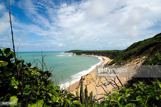 Panoramic of Dolphin Bay at Praia da Pipa