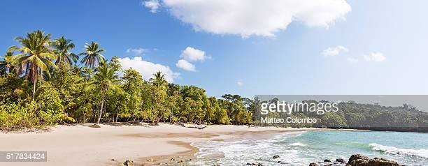 Panoramic of exotic beach, Manuel Antonio national park, Costa Rica