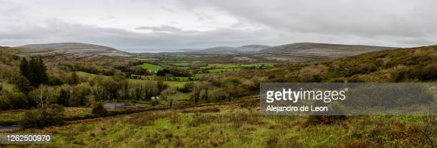 panoramic of ireland lands - overcast stock pictures, royalty-free photos & images
