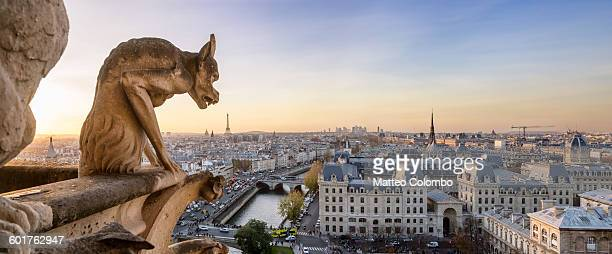 panoramic of notre dame gargoyle and city of paris - notre dame de paris stock photos and pictures