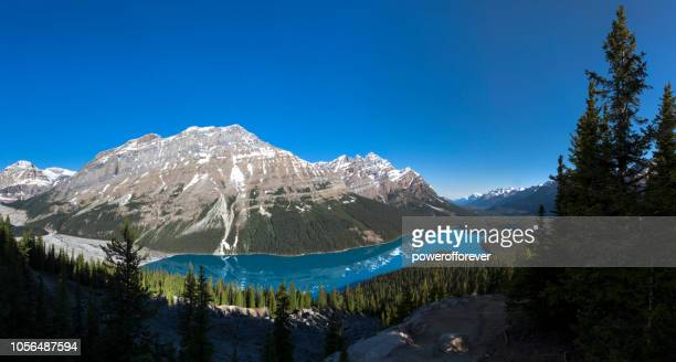 Panoramic of Peyto Lake in the Canadian Rocky Mountains of Banff National Park, Alberta, Canada