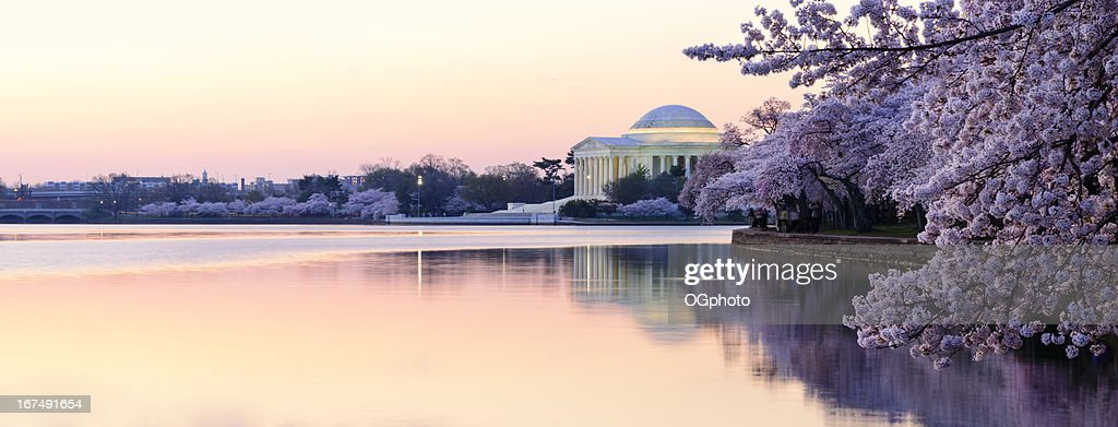 Panoramic of Thomas Jefferson Memorial in the early morning : Stock Photo