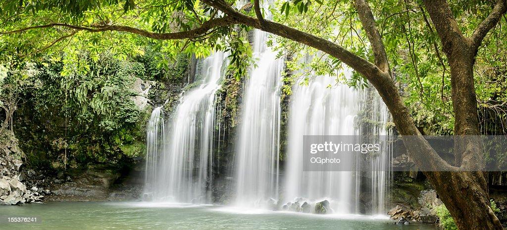 XXXL: Vista panorámica de cascada tropical con retroiluminación hojas : Foto de stock