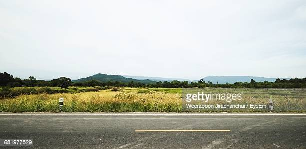Panoramic Rural Landscape In Summer