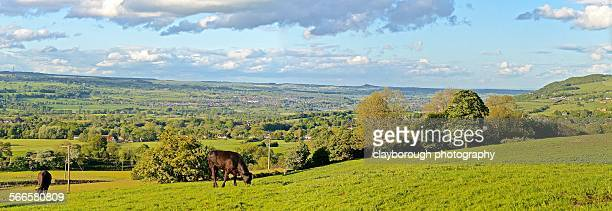 panoramic rural scene - オトレイ ストックフォトと画像