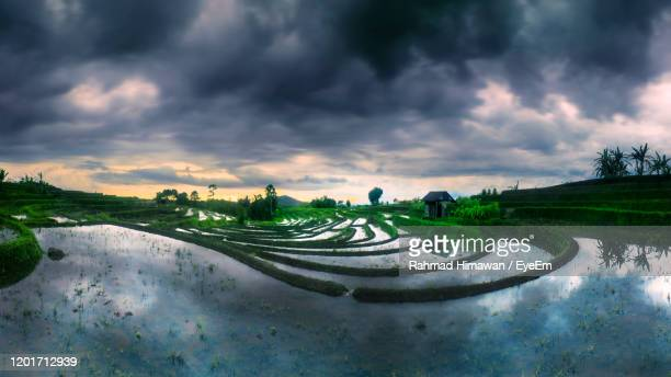 panoramic shot of field against sky - rahmad himawan stock pictures, royalty-free photos & images