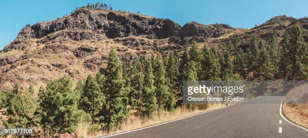 panoramic shot of road amidst trees against clear sky - bortes cristian stock photos and pictures