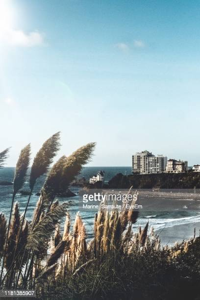 panoramic shot of sea and buildings against sky - biarritz stock pictures, royalty-free photos & images