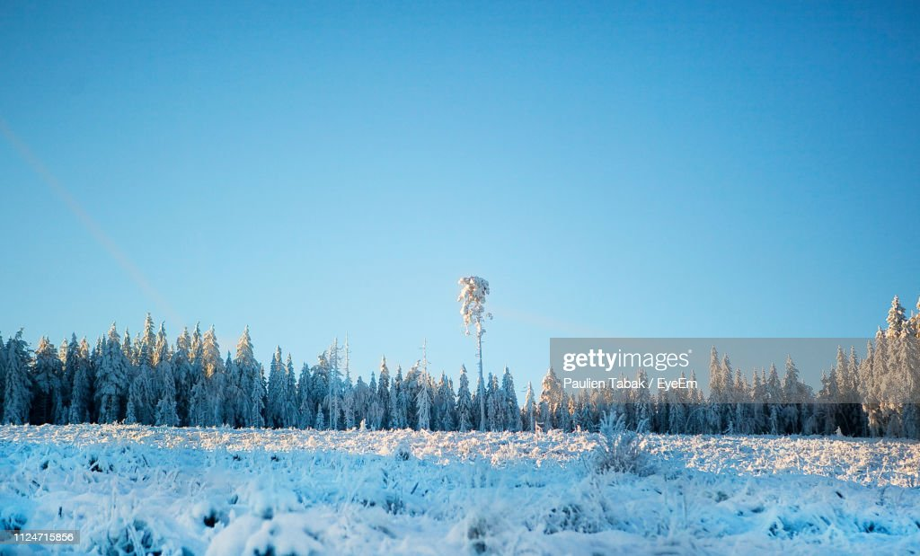 Panoramic Shot Of Snow Covered Field Against Clear Blue Sky : Stockfoto