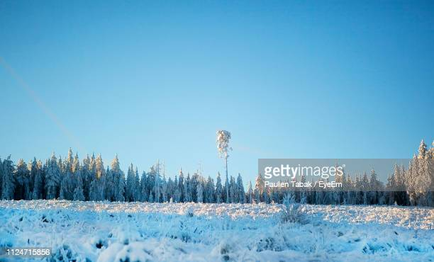 Panoramic Shot Of Snow Covered Field Against Clear Blue Sky