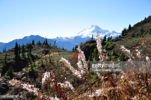 panoramic shot of snowcapped mountains against sky - indiana stock pictures, royalty-free photos & images