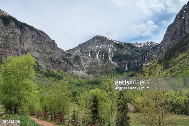 panoramic shot of trees and mountains against sky - pandora peaks stock photos and pictures