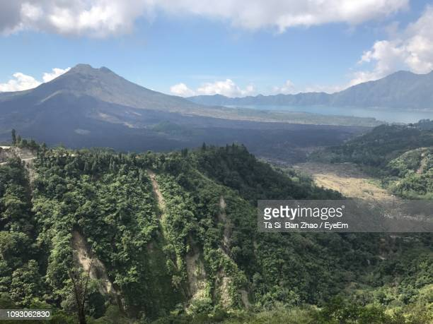 panoramic shot of trees on landscape against sky - kintamani district stock pictures, royalty-free photos & images