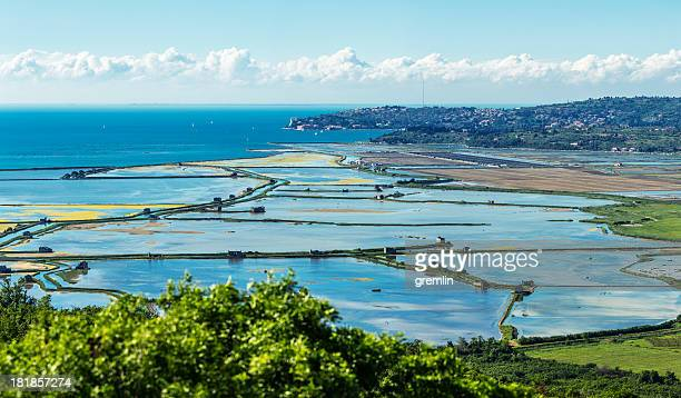 panoramic shot pf salt pans secovlje, slovenia - adriatic sea stock pictures, royalty-free photos & images