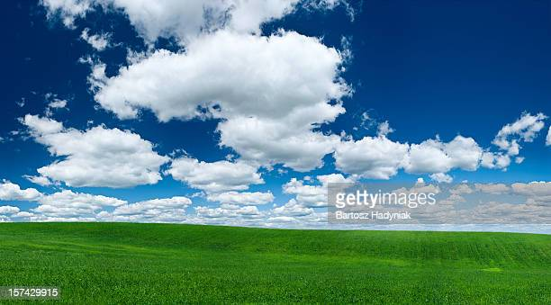 Panoramic spring landscape 66 MPix XXXL - green field, sky
