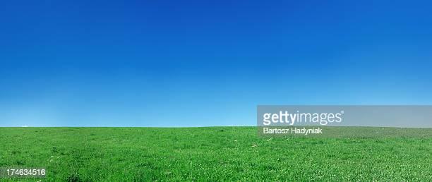 パノラマに広がる春ランドスケープ 94MPix XXXXL meadow 、クリア、ブルースカイ
