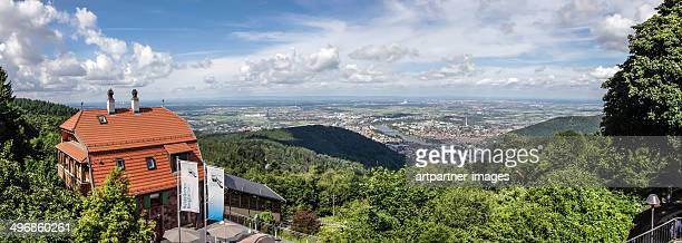 panoramic view at heidelberg, germany - heidelberg germany stock pictures, royalty-free photos & images