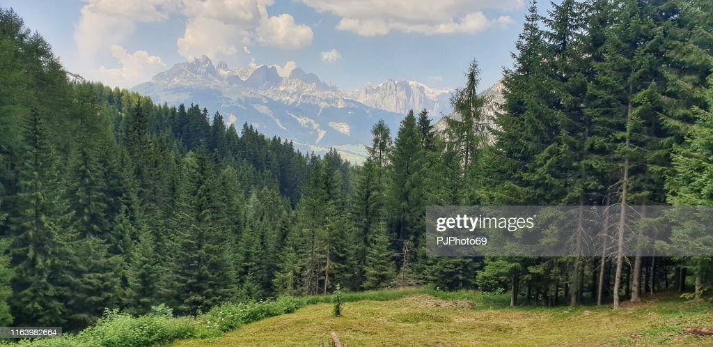 Panoramic view from Alpe Lusia - Dolomites : Stock Photo