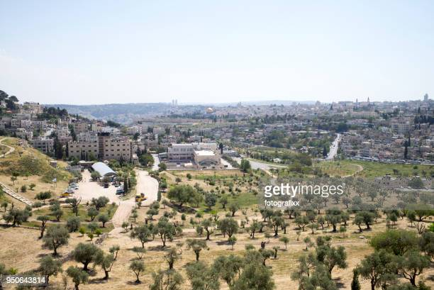 panoramic view from mount of olives to old town of jerusalem - mount of olives stock photos and pictures