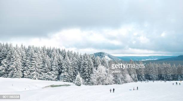 panoramic view from Schmücke on snow caped Thuringian Forest