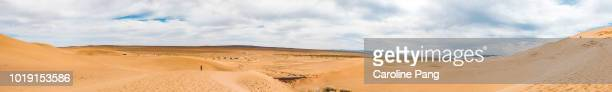 Panoramic view from the top of Khongoryn Els sand dune and the vast and endless flat landscape of the Gobi desert in Mongolia.