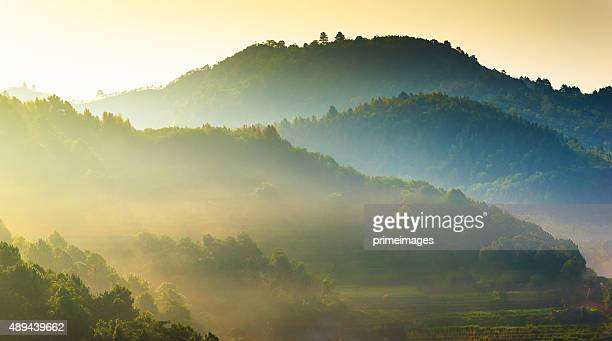 panoramic view misty morning sunrise in mountain at north thailand - climate stock pictures, royalty-free photos & images