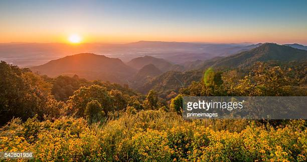 Panoramic view misty morning sunrise in mountain at north Thailand