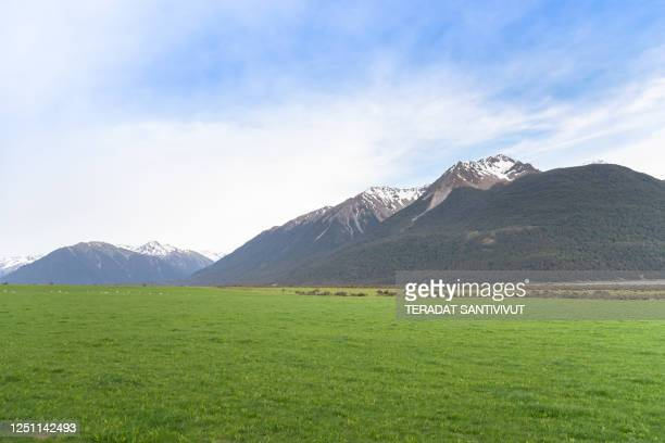 panoramic view nature landscape in queenstown with lake and mountains south island new zealand - alpes neozelandeses fotografías e imágenes de stock