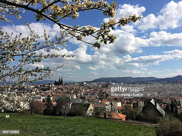 Panoramic View Of A City In Spring