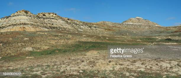panoramic view of a prairie dog town in theodore roosevelt national park, south unit - prairie stock photos and pictures