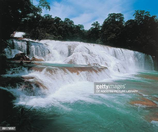 Panoramic view of a waterfall Agua Azul Waterfall Tulija River Chiapas Mexico