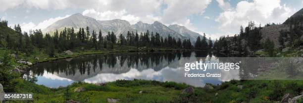 panoramic view of alpine lake lago di ragozza, bognanco valley - larch tree stock pictures, royalty-free photos & images