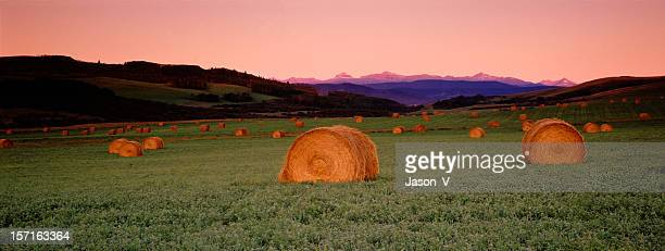 panoramic view of bales & mountains - foothills stock pictures, royalty-free photos & images