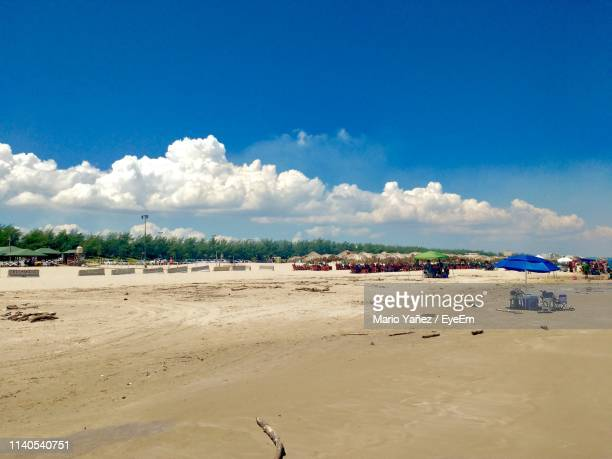 panoramic view of beach against blue sky - タマウリパス州 ストックフォトと画像