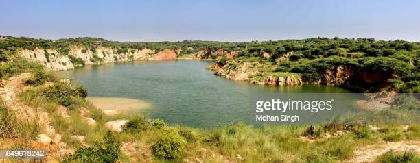 panoramic view of bharadwaj lake in asola bhatti wildlife sanctuary, delhi - faridabad stock pictures, royalty-free photos & images