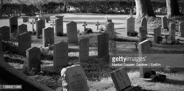 panoramic view of cemetery - history stock pictures, royalty-free photos & images