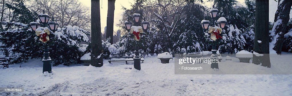 Panoramic View Of Christmas Wreath On Lampposts In Central Park Manhattan New York City