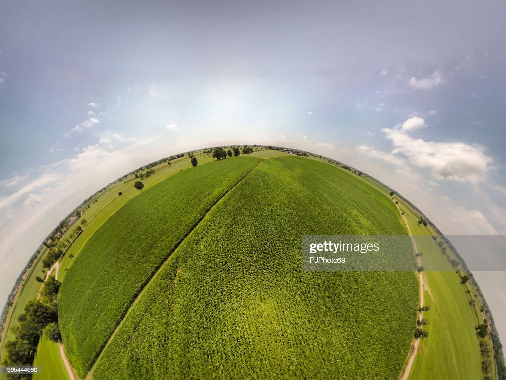 360° panoramic view of corn fields : Foto stock