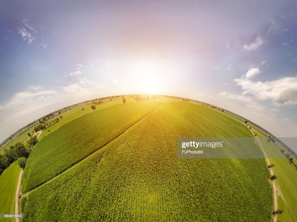 360° panoramic view of corn fields with sunlight : Foto stock