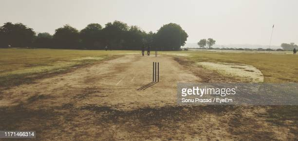 panoramic view of cricket field during sunny day - cricket field stock pictures, royalty-free photos & images