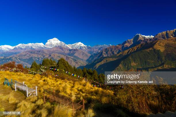 panoramic view of daulagiri peak and annapurna mountain range from poon hill viewpoint in the morning, nepal. - annapurna conservation area stock photos and pictures